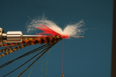 Fly tying - Autumn Hope - Step 8