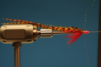 Fly tying - Autumn Hope - Step 6