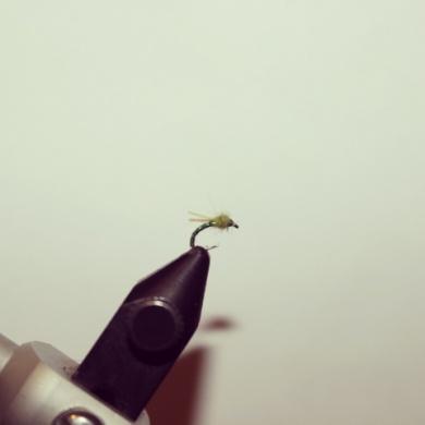 "Fly tying - The ""Mountain Dew Midge"" - Step 7"