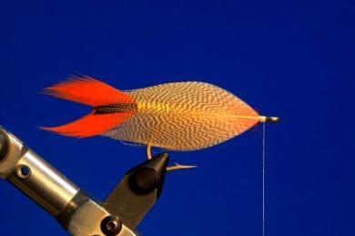 Fly tying - M.M. Silver Mojarra - Step 4