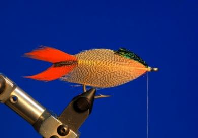 Fly tying - M.M. Silver Mojarra - Step 5