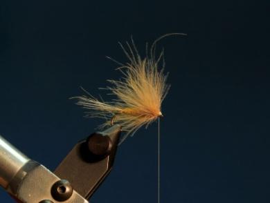 Fly tying - CDC DUN - Step 9