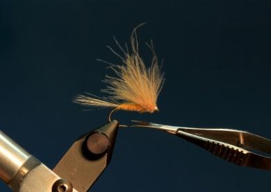 Fly tying - CDC DUN - Step 10