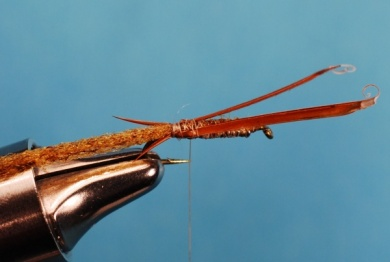 Fly tying - Whitlock's Sowbug - Step 4