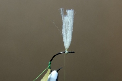 Fly tying - N.A.KH. (Not Another Klinkhamer). - Step 3