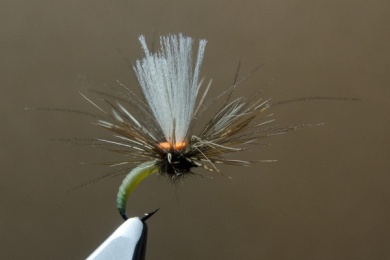 Fly tying - N.A.KH. (Not Another Klinkhamer). - Step 12