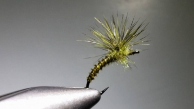 Fly tying - BWO X emerger - Step 1