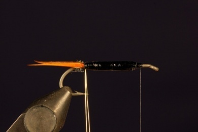 Fly tying - Prince Nymph - Step 5