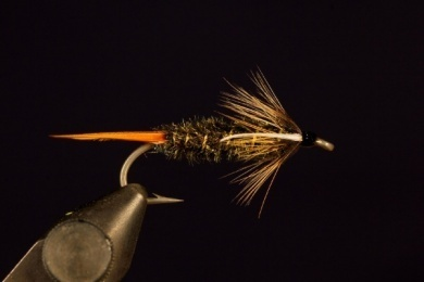 Fly tying - Prince Nymph - Step 9