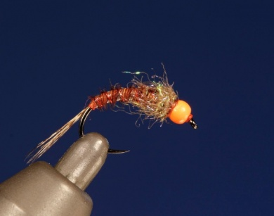 Fly tying - UV HOT HEAD PHEASANT TAIL - Step 8