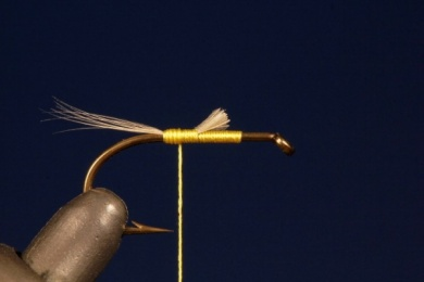 Fly tying - Tup's Indispensable - Step 1