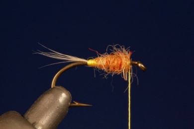 Fly tying - Tup's Indispensable - Step 2