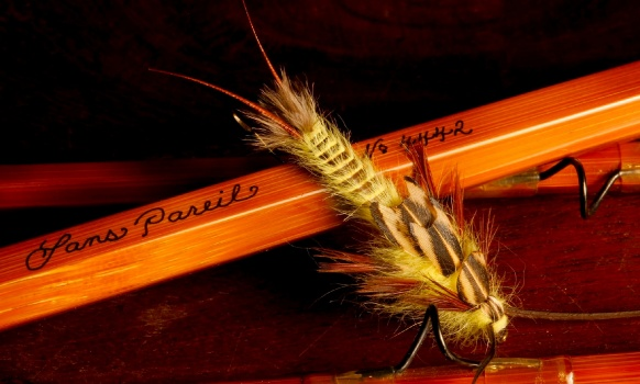Many of you have probably experimented with the effectiveness of the flies with bodies made with quills, using for example peeled peacock quills in their natural or dyed color.
