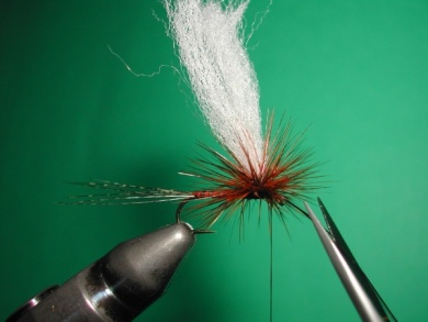 Fly tying - Paraloop with wings - Step 13