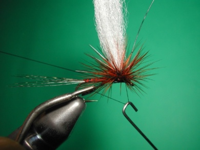 Fly tying - Paraloop with wings - Step 14