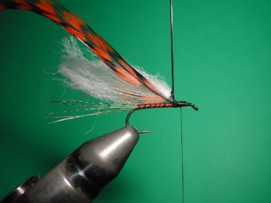 Fly tying - Paraloop with wings - Step 7