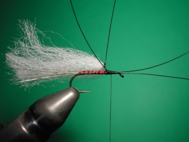 Fly tying - Paraloop with wings - Step 5