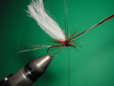Fly tying - Paraloop with wings - Step 8