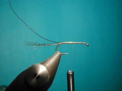 Fly tying - Paraloop without loop - Step 2
