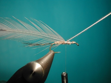 Fly tying - Paraloop without loop - Step 7