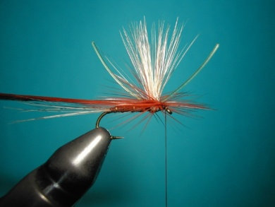Fly tying - Parachute with rooster fiber wings - Step 8