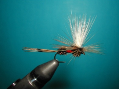 Fly tying - Parachute with rooster fiber wings - Step 14