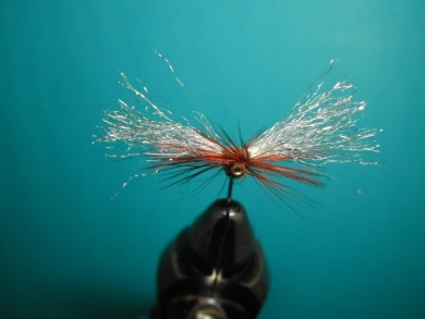 Fly tying - My parachute spent. - Step 11