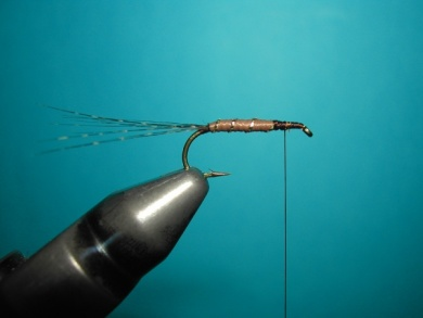 Fly tying - My parachute spent. - Step 1