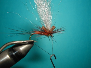 Fly tying - My parachute spent. - Step 7