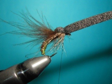 Fly tying - Caddis emerger - Step 13