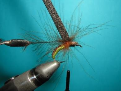Fly tying - Caddis emerger - Step 8