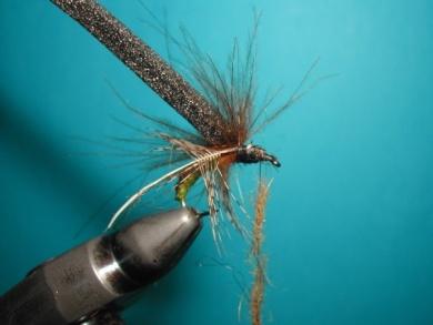 Fly tying - Caddis emerger - Step 11