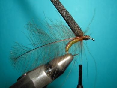 Fly tying - Caddis emerger - Step 7
