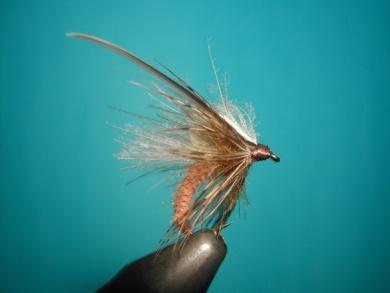 Fly tying - Caddis emerger CDC body. - Step 16