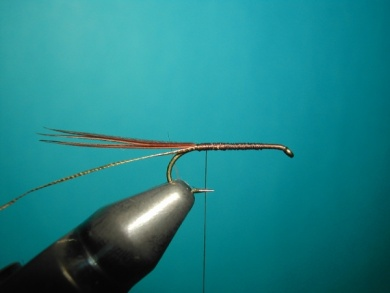 Fly tying - March Brown Self Split Wings - Step 2