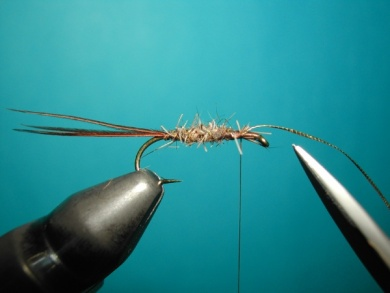 Fly tying - March Brown Self Split Wings - Step 5