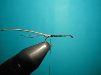 Fly tying - Self Split hackle fly - Step 1