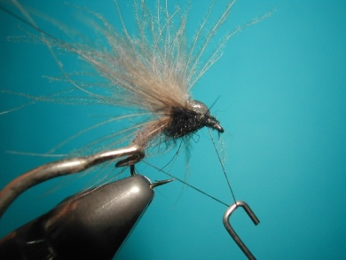 Fly tying - Upset hackle. - Step 10