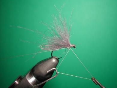 Fly tying - Speedy midge - Step 7