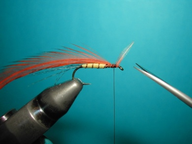 Fly tying - Thorax with X of foam. - Step 1