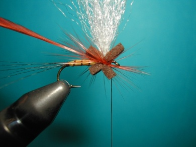 Fly tying - Thorax with X of foam. - Step 5