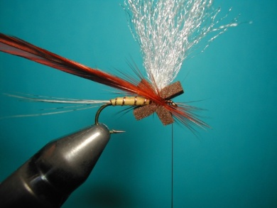 Fly tying - Hackle oriented forward to 45° - Step 5
