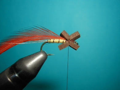 Fly tying - Hackle oriented forward to 45° - Step 2