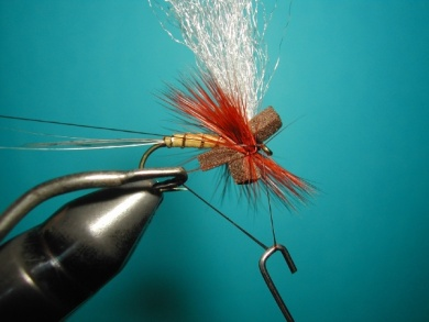 Fly tying - Hackle oriented forward to 45° - Step 7