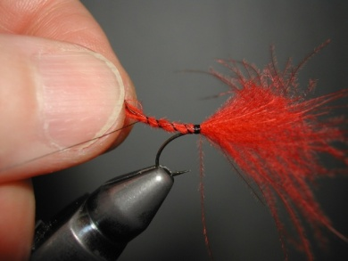 Fly tying - Mirage 4  - Step 5