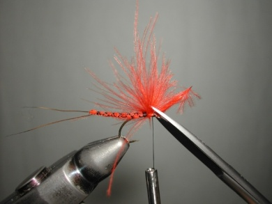 Fly tying - Mirage 4  - Step 10