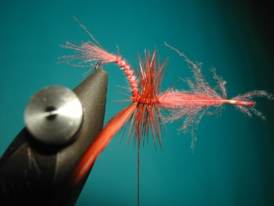 Fly tying - Emerger - Step 6
