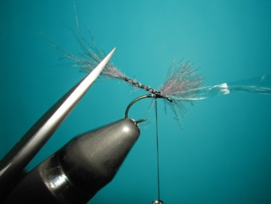 Fly tying - Midge with synthetic raffia wings. - Step 4