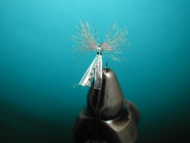 Fly tying - Midge with synthetic raffia wings. - Step 9