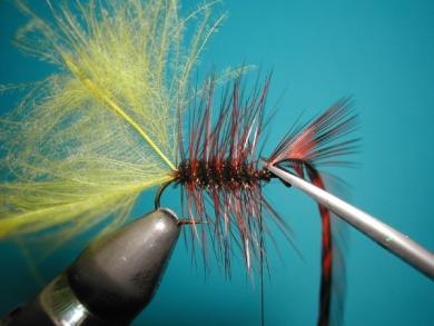 Fly tying - Palmer - Step 5